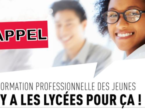 LA FORMATION PROFESSIONNELLE DES JEUNES: IL Y A DES LYCÉESPOUR CA!