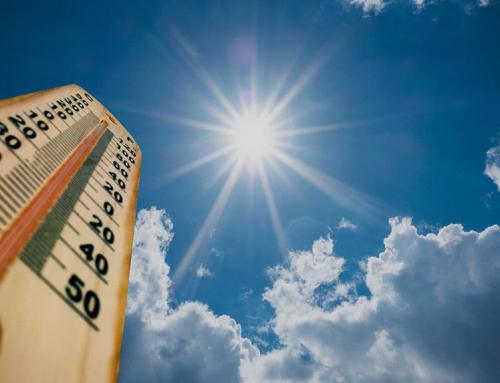 Urgence climatique, en PACA, on manifeste pour notre planète .